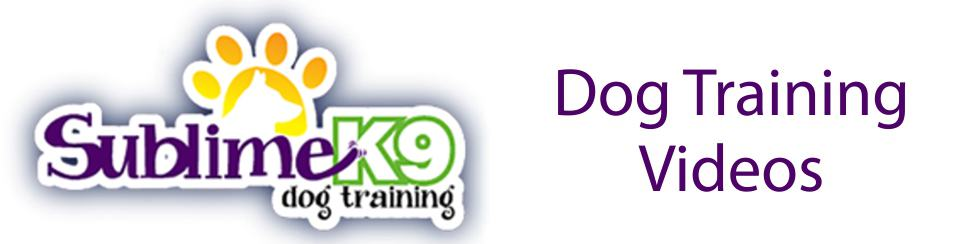 long island dog training videos